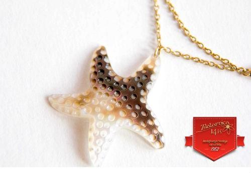Oglica Morska zvezda